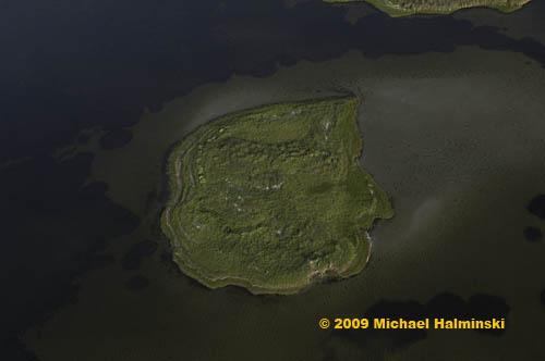 island-marsh