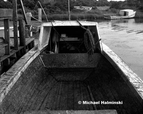 shad boat