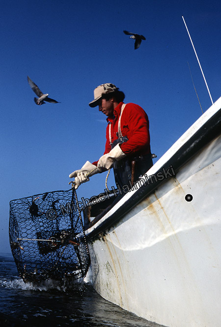 Commercial fishing boat pamilco sound gillnetting for Bank fishing near me